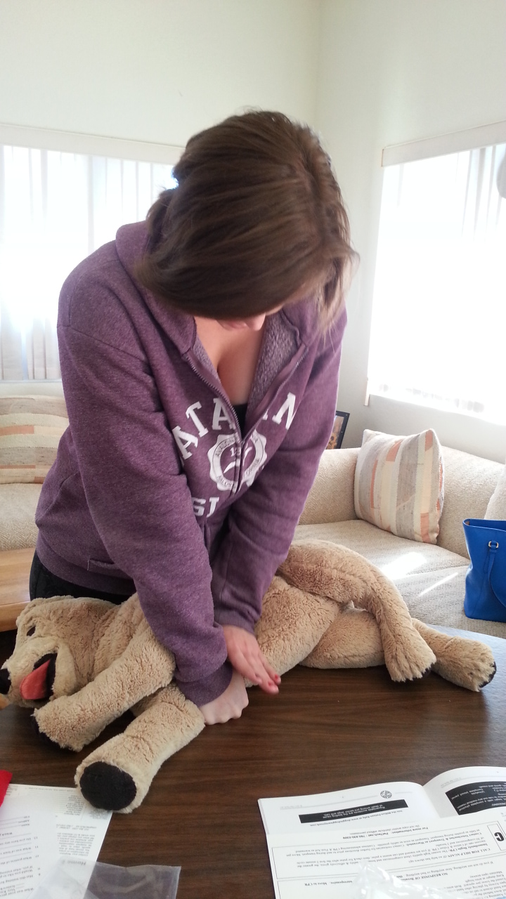 Pet Cpr And First Aid Paws N Critters